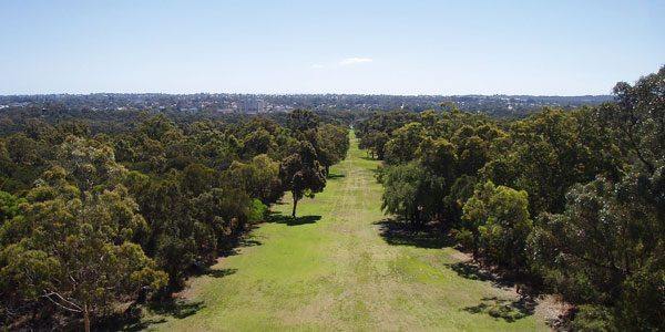 What's On in Kings Park Perth