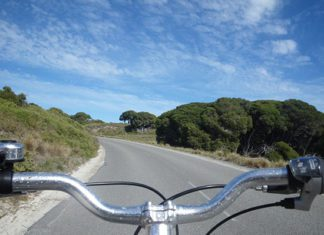 What's on in Sydney New South Wales - Cycling the City