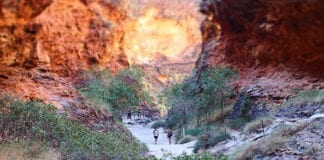 Kimberley Tours - bungle bungles north west australia