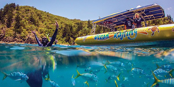 snorkelling the whitsundays