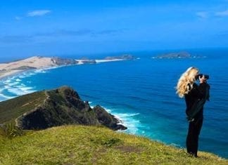 Explore New Zealand From Top To Toe