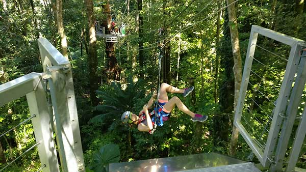 Daintree day tours