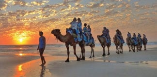Camel Ride Broome Tours