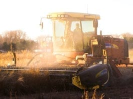 Farm Jobs in New South Wales