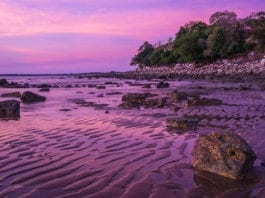 Darwin Day Trips Excursions & Full Day Trips