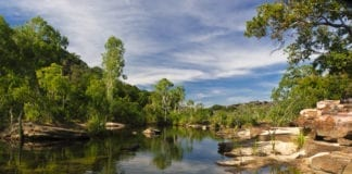 Darwin to Cairns Overland Adventures by Bus or Coach