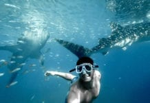 Tours From Perth to Ningaloo Reef Coral Bay