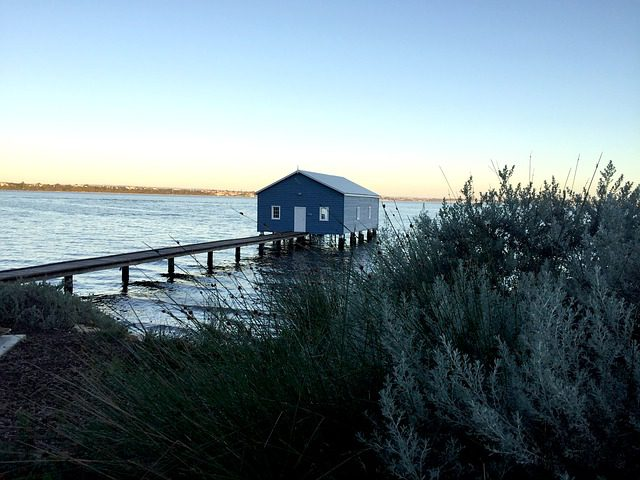 Things to Do in Perth This Weekend Australia Tour Rottnest Island
