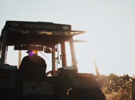 Farm Jobs in Sydney for Working Holiday Visa