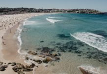 5 Awesome Things to do in Sydney Australia