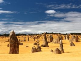 Pinnacles day trip from Perth