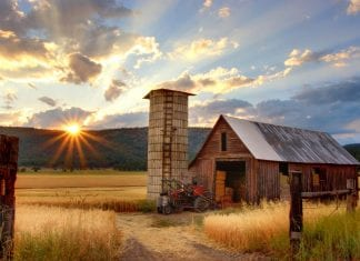 Working Farms in Australia For Second Year Visas