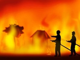 How Australian Bushfire Have Warned the World about Global Warming