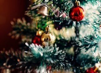 What's on in Fremantle this Christmas
