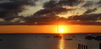 What's on in Rottnest Island this New Year's Eve 2020