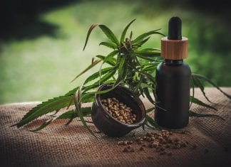Things About CBD You Can't Afford To Miss