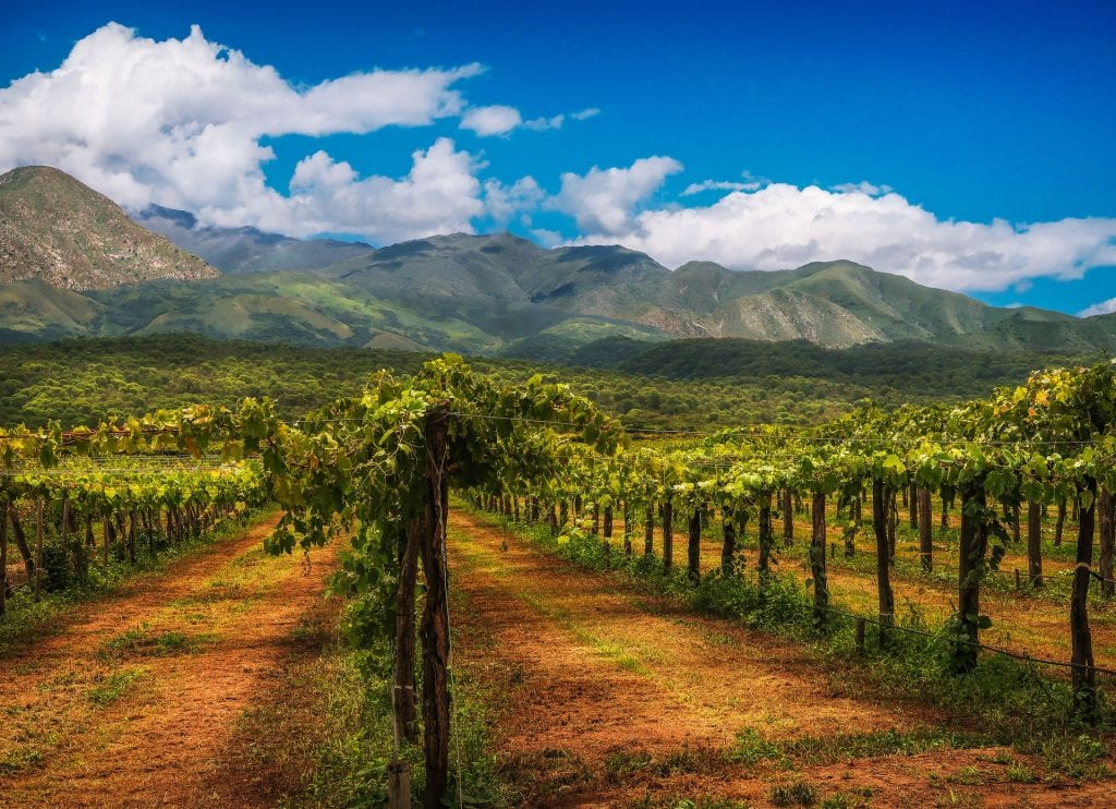 Breathtaking Wineries to Visit on Your Next Road Trip in Thailand