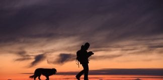 Amazing Adventures to Take With Your Dog