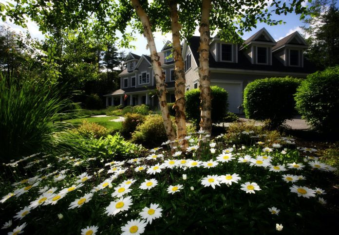 Reasons Why You Might Need to Hire an Irrigation Company