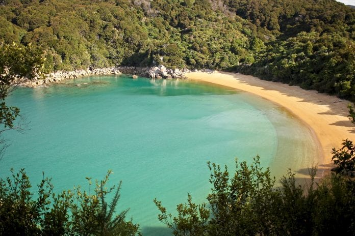 Things to do in Nelson