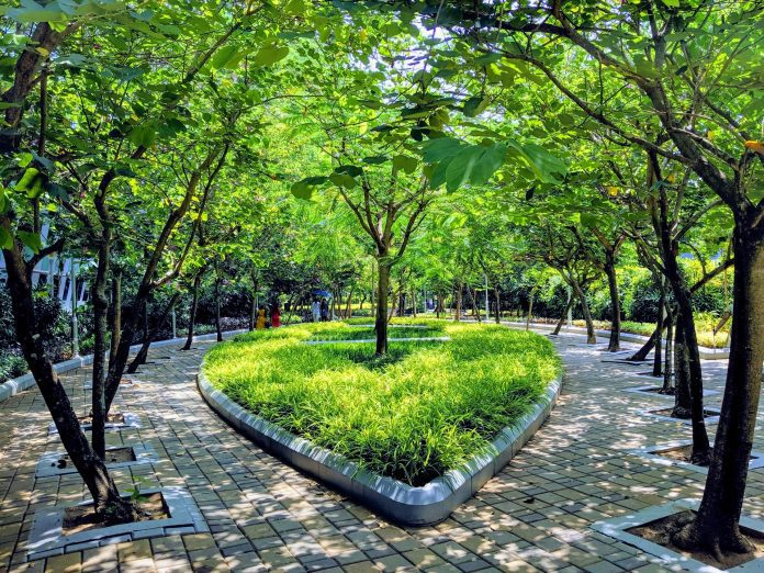 GREEN BUSINESS IDEAS AND THEIR BENEFITS